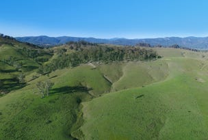 Lot 101 Anderson Creek Road, Weismantels, NSW 2415