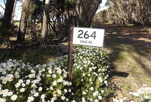 264 Doug Road, Dudley East, SA 5222