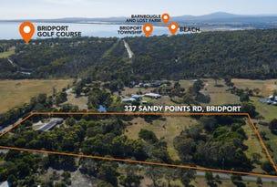 337 Sandy Point Road, Bridport, Tas 7262