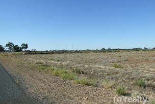 S90 & 186 Sanctuary Rd Chaffey via, Renmark, SA 5341
