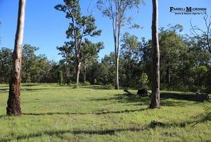 Lots 1 & 102, 782 Clarence Way, Whiteman Creek, NSW 2460