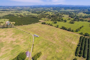 538 Cowlong Road, McLeans Ridges, NSW 2480