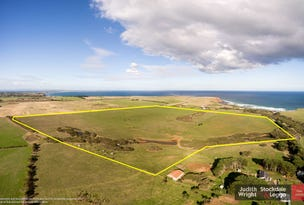 493 Berrys Beach Road, Ventnor, Vic 3922