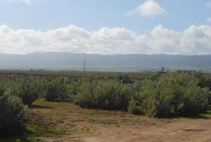 L828/836 Boundary Road, Coonamia, SA 5540