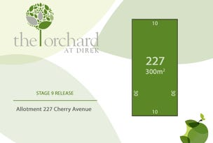 Lot 227 Cherry Avenue, Direk, SA 5110