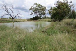 Water + Grass = Cattle, Warialda, NSW 2402