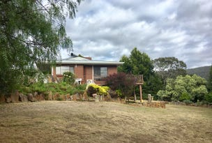 11 Lakeview Court, Blackstone Heights, Tas 7250
