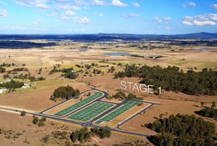 Lot 41 Ravensfield, Farley, NSW 2320
