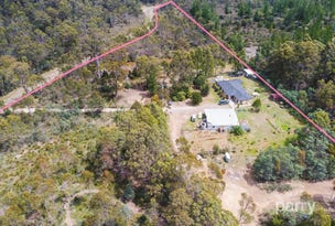 340 Austins Road, Turners Marsh, Tas 7267