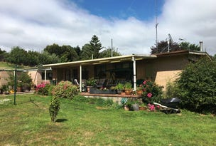 1409 Trowutta Road, Edith Creek, Tas 7330