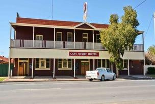 41 Adams Street, Wentworth, NSW 2648