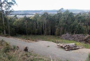151 Kelcey Tier Road, Spreyton, Tas 7310