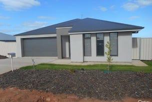 141 Shirley Street (St Eyre Estate), Port Augusta West, SA 5700