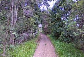 10 Roseneath Road, Bobs Creek, NSW 2443
