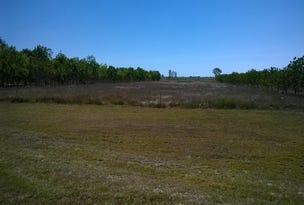 72 Plantation Ave, Horseshoe Lagoon, Qld 4809
