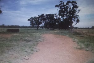 Lot 260 Parkes Road, Condobolin, NSW 2877