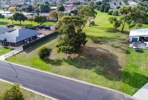 6 Lakes Park Drive, Ob Flat, SA 5291