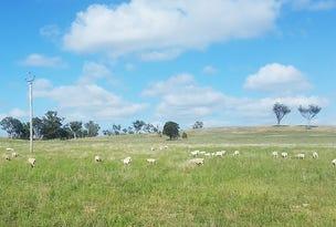 541 Castlereagh Highway, Gulgong, NSW 2852