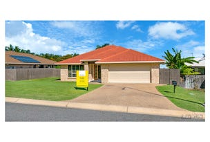 4 Cycad Court, Norman Gardens, Qld 4701