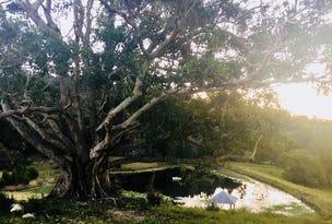 Yagers Lane, Skinners Shoot, NSW 2481