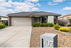 107 Warralily Boulevard, Armstrong Creek, Vic 3217