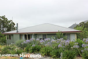 664 Currs Road, Tenterfield, NSW 2372
