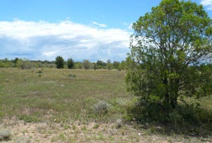 LOT 28 GAZZARD ROAD, Tara, Qld 4421