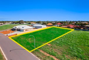 9 Sheoak Close, Woorree, WA 6530