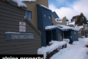 SNOWGUMS 8/19 Big Muster Drive, Dinner Plain, Vic 3898