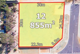 Lot 12, Tarling Place, Maddington, WA 6109
