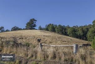 Lot 1 Wattle Grove Road, Wattle Grove, Tas 7109