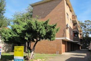2/15 Acacia Street, Cabramatta, NSW 2166