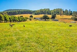 1772 South Riana Road, Gunns Plains, Tas 7315