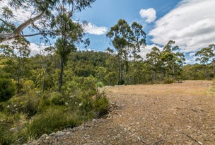 29 Cowen Joe Road, Gardners Bay, Tas 7112