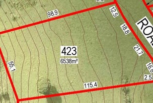 Lot 423 Cameron Park, McLeans Ridges, NSW 2480