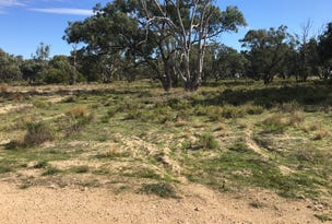 Lot 75 Page Drive, Riverbanks Estate, Blanchetown, SA 5357