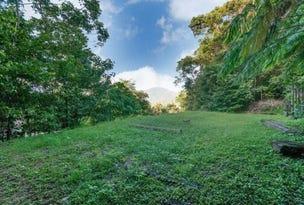 7 Planchonella Close, Edge Hill, Qld 4870