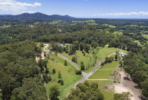 Lot 12, 0 Mackay Place, Newee Creek, NSW 2447