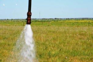 Water Licence, Mount Benson, SA 5275