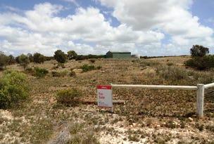 Section 185 Farm Beach Road, Wangary, SA 5607