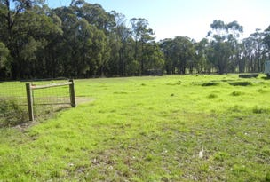 Lot 1, 223 Shady Creek Road, Darnum, Vic 3822