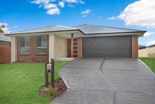 58 Watervale Circuit, Chisholm, NSW 2322