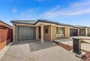 19 Henry Kendall Street, Franklin, ACT 2913