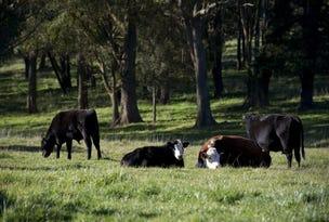 Ferndale Road, Bundanoon, NSW 2578