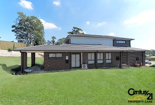 7A  Ossa Place, Minto, NSW 2566