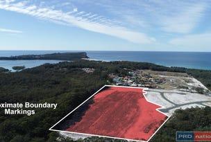 Lot 125 Scarborough Way, Dunbogan, NSW 2443