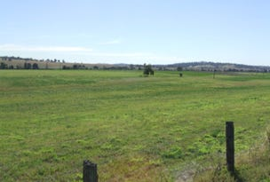Lot 1 Glenridding Road, Singleton, NSW 2330