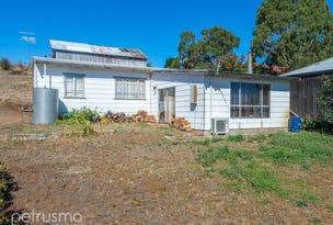 193 Gordon River Road, Macquarie Plains, Tas 7140