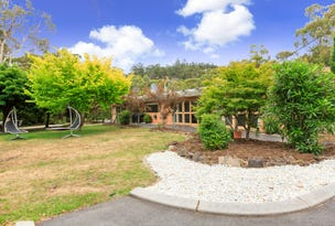 2 Tabor Road, Acton Park, Tas 7170