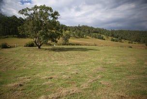 Lot 7 3871 Old Glen Innes Road, Buccarumbi, NSW 2460